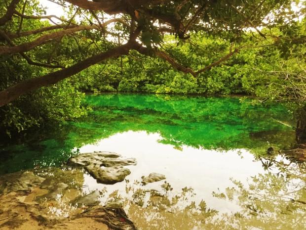 cenote-casa