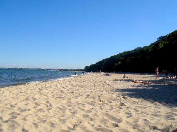 Dzika plaza- wild beach in Gdynia